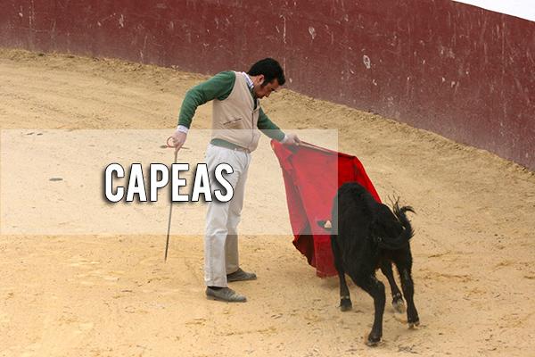Capeas Sevilla