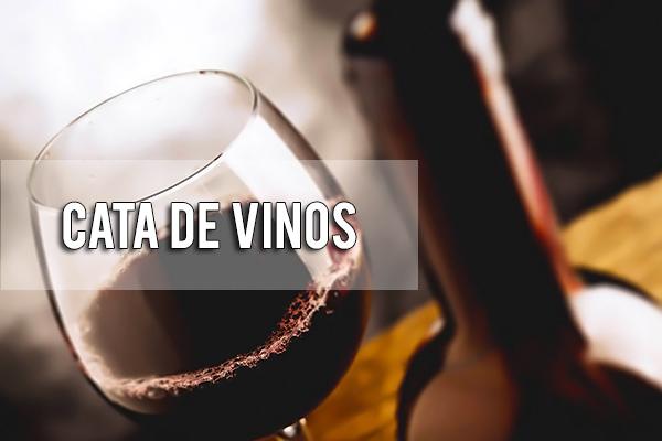 Cata de Vinos en Sevilla